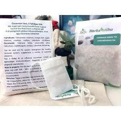 HOMEMADE herbal tea - Cinnamon (10 pcs)