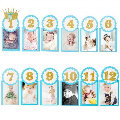 Baby monthly milestone photograph garland-boy