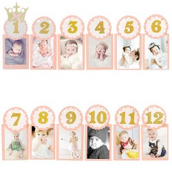 Baby girl monthly milestone photograph garland